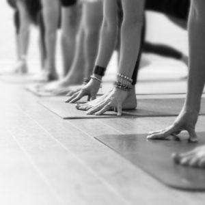 Dharma Yoga Gentle